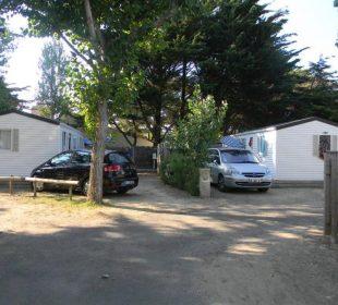 Camping Club Mahana : Timoé