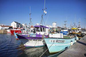 Camping Club Mahana : Port De Pêche St Gilles Croix De Vie A