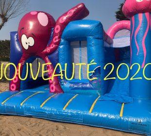 château gonflable 2020