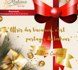 Camping Club Mahana : Bon Cadeau Noel Instagram